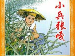 学生阅读《小兵张嘎》读书笔记3篇随笔